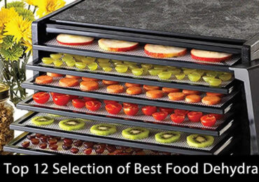 My Top 12 Selection of Best Food Dehydrator (Updated 2020)
