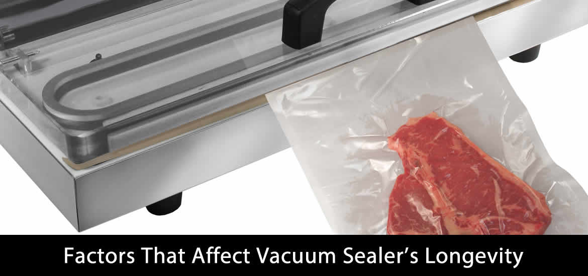 Factors That Affect Vacuum Sealer's Longevity